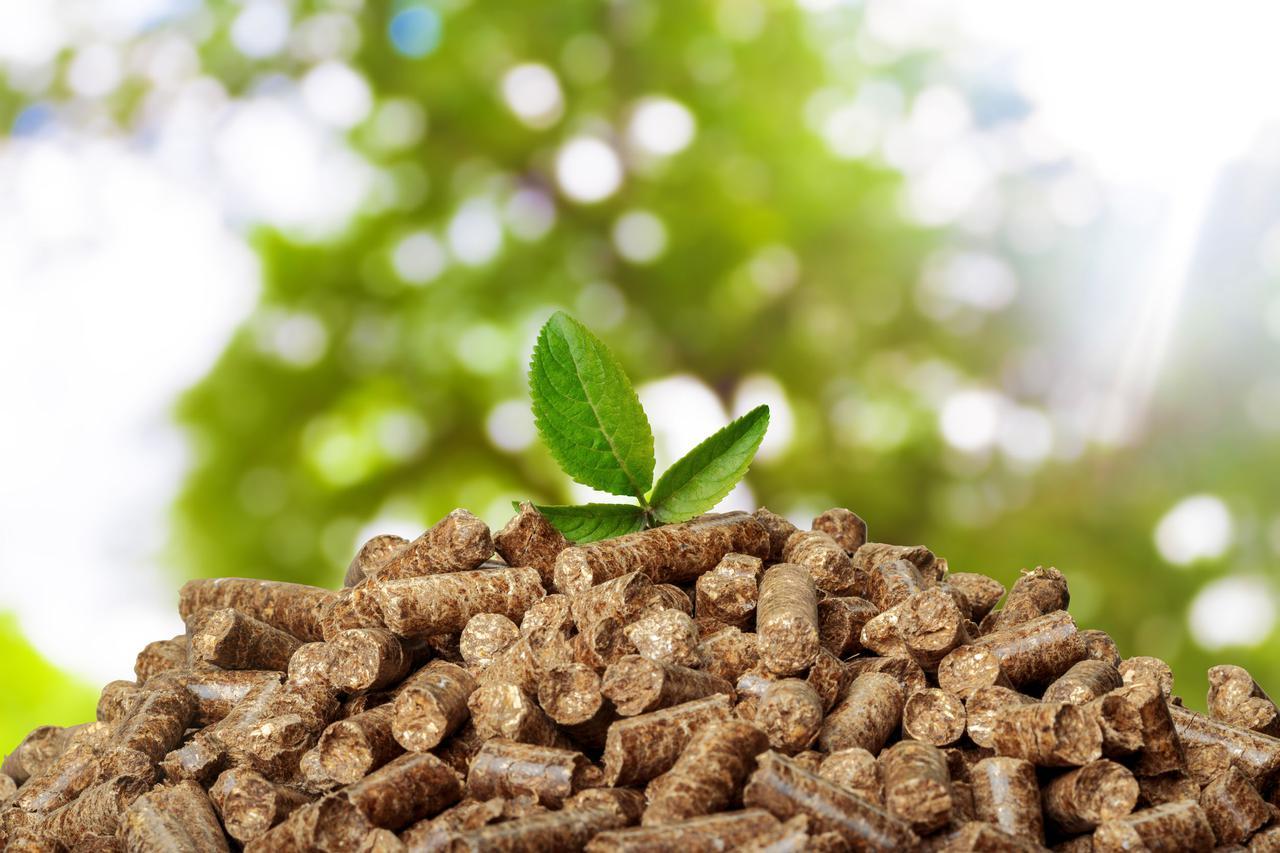 画像: ペレットストーブは木くずで作った「木質ペレット」が燃料! 二酸化炭素排出も少なく環境に良い!