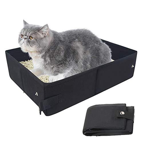 画像2: 【体験レビュー】初めて〝愛猫と一緒〟に行くデイキャンプ!下準備や持ち物・気を配るべきポイントを徹底解説