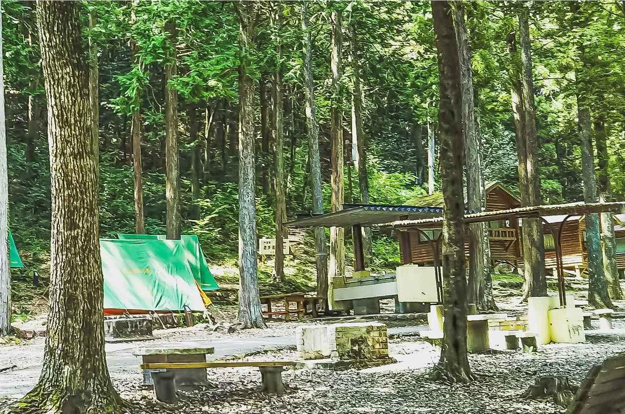 画像: 愛知県・某キャンプ場