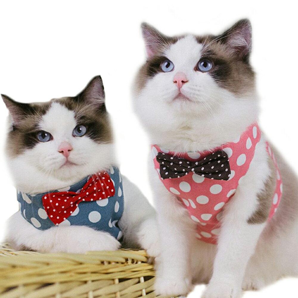 画像3: 【体験レビュー】初めて〝愛猫と一緒〟に行くデイキャンプ!下準備や持ち物・気を配るべきポイントを徹底解説