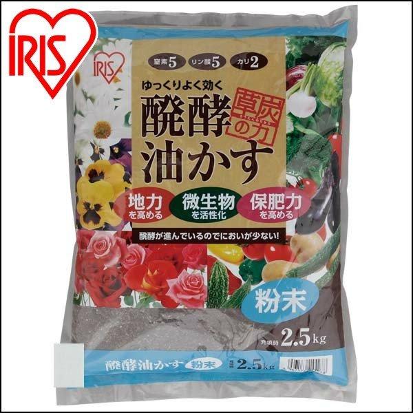 画像2: 【唐辛子の栽培】育て方・レシピも紹介! プランターがあれば栽培可能 ベランダ菜園初心者にピッタリ♪