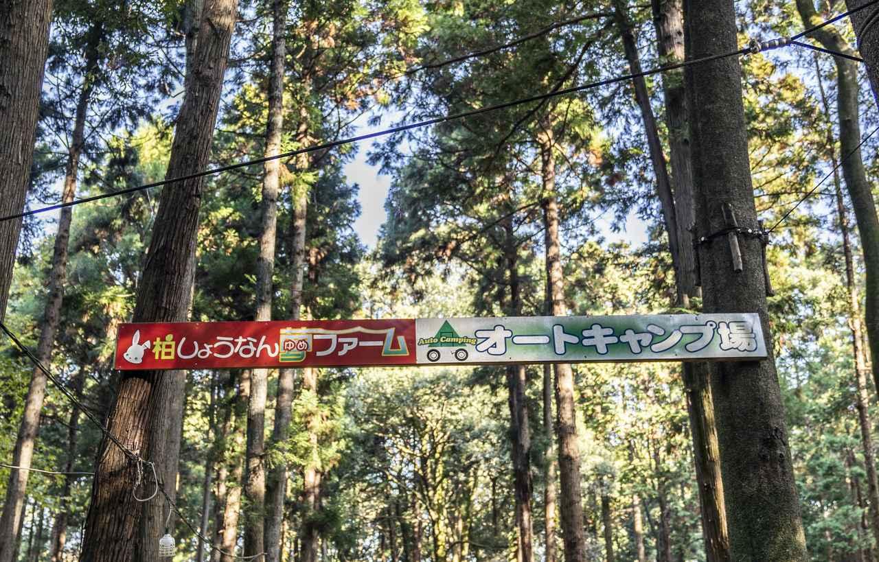 画像: 柏しょうなんゆめファーム入口付近の様子1 (photographer 吉田 達史)