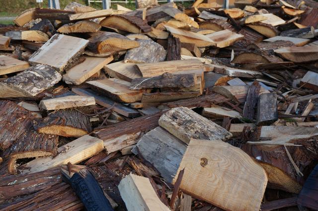 画像: 筆者撮影「使い放題の薪は湿っていることも」