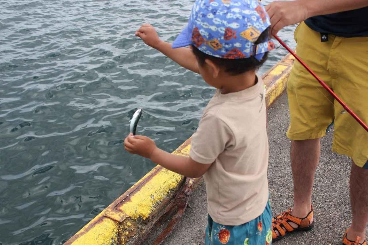 画像: 筆者の息子もサビキ釣りで魚をGET (筆者撮影)