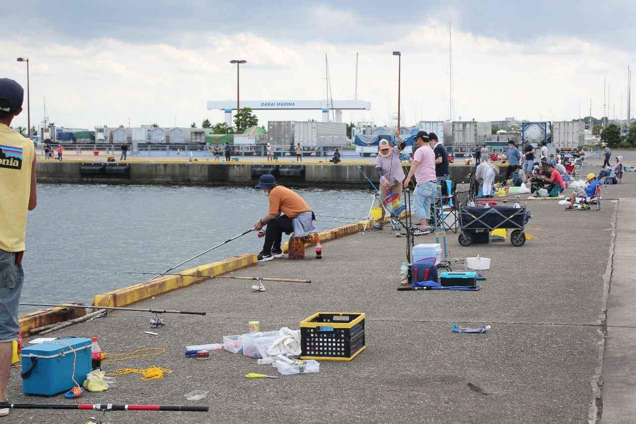 画像: 堤防での釣りの様子 (筆者撮影)