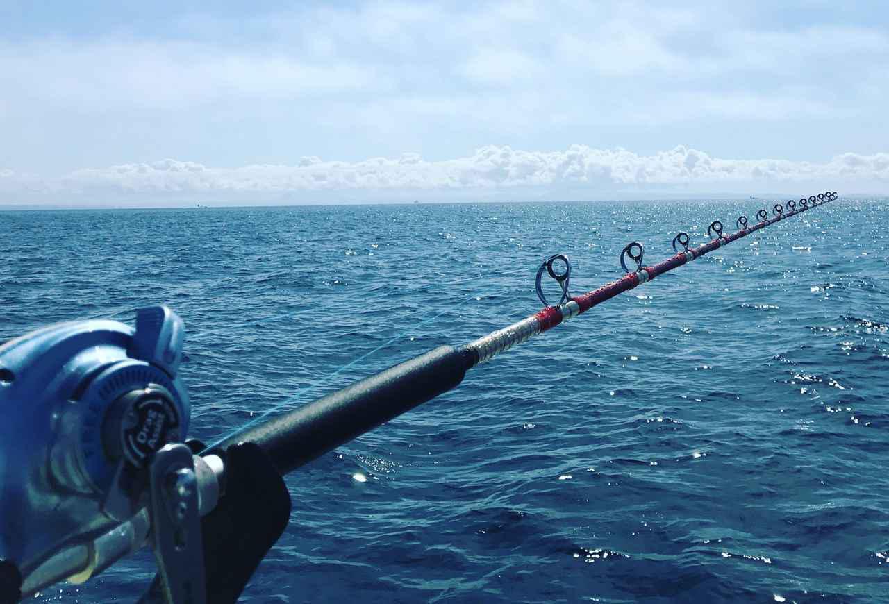 画像1: 初心者向け海釣りを始めるときのポイント! サビキ・サヨリ釣りの仕掛けや道具も紹介! - ハピキャン(HAPPY CAMPER)