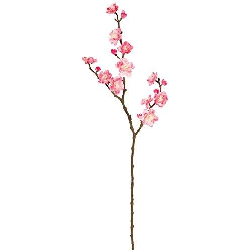 画像3: 【DIY】おうちキャンプで春を演出! ミモザと桜の花飾り(リース&フラワーボール)の作り方