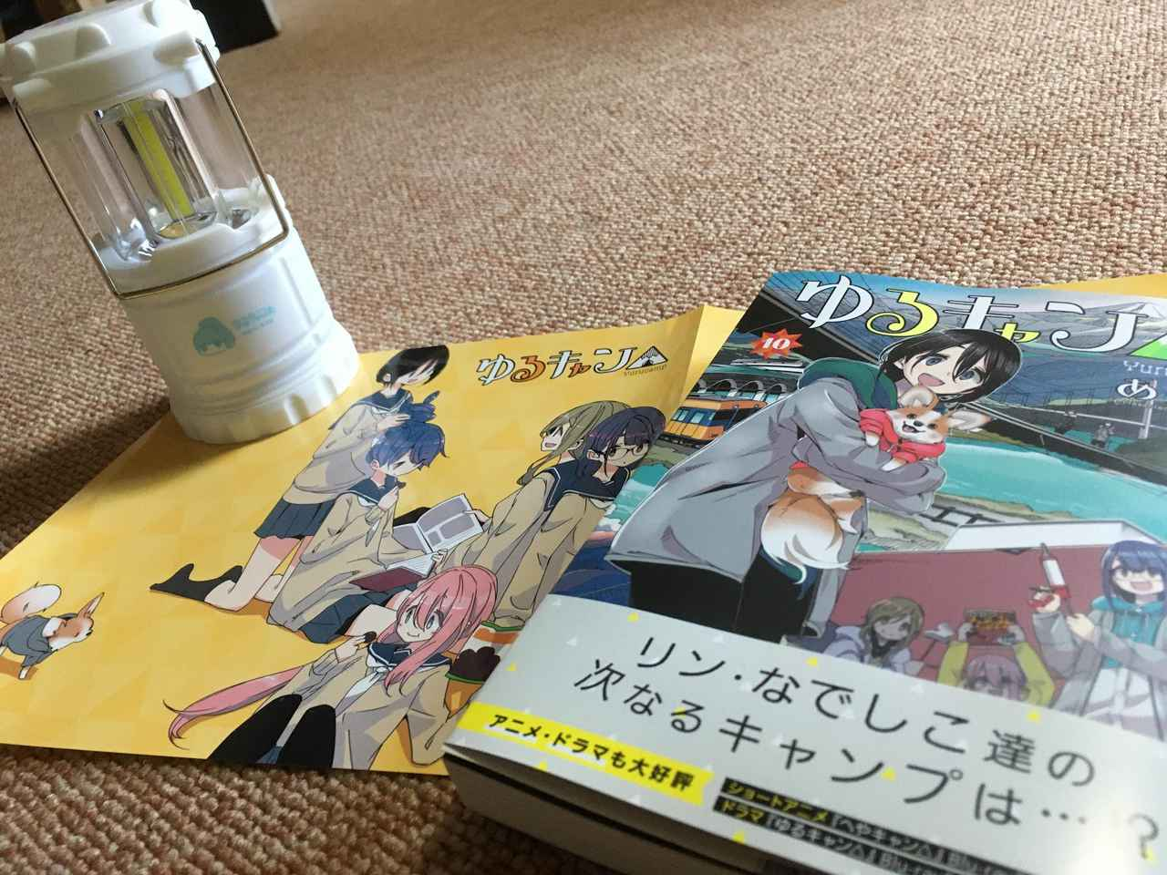 画像: 筆者撮影 現在(2021年2月)、最新11巻まで発売中!