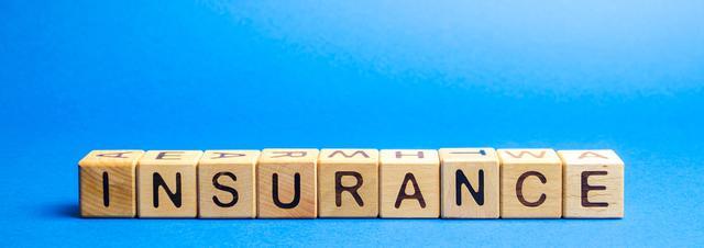 画像: やはり頼れる保険