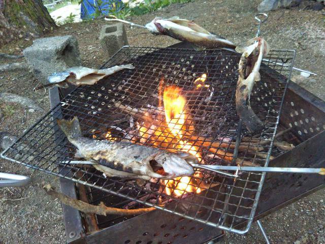 画像: 【超楽しい】釣りキャンプの魅力や注意点を紹介!伝統的釣り方〝テンカラ〟とは? - ハピキャン(HAPPY CAMPER)