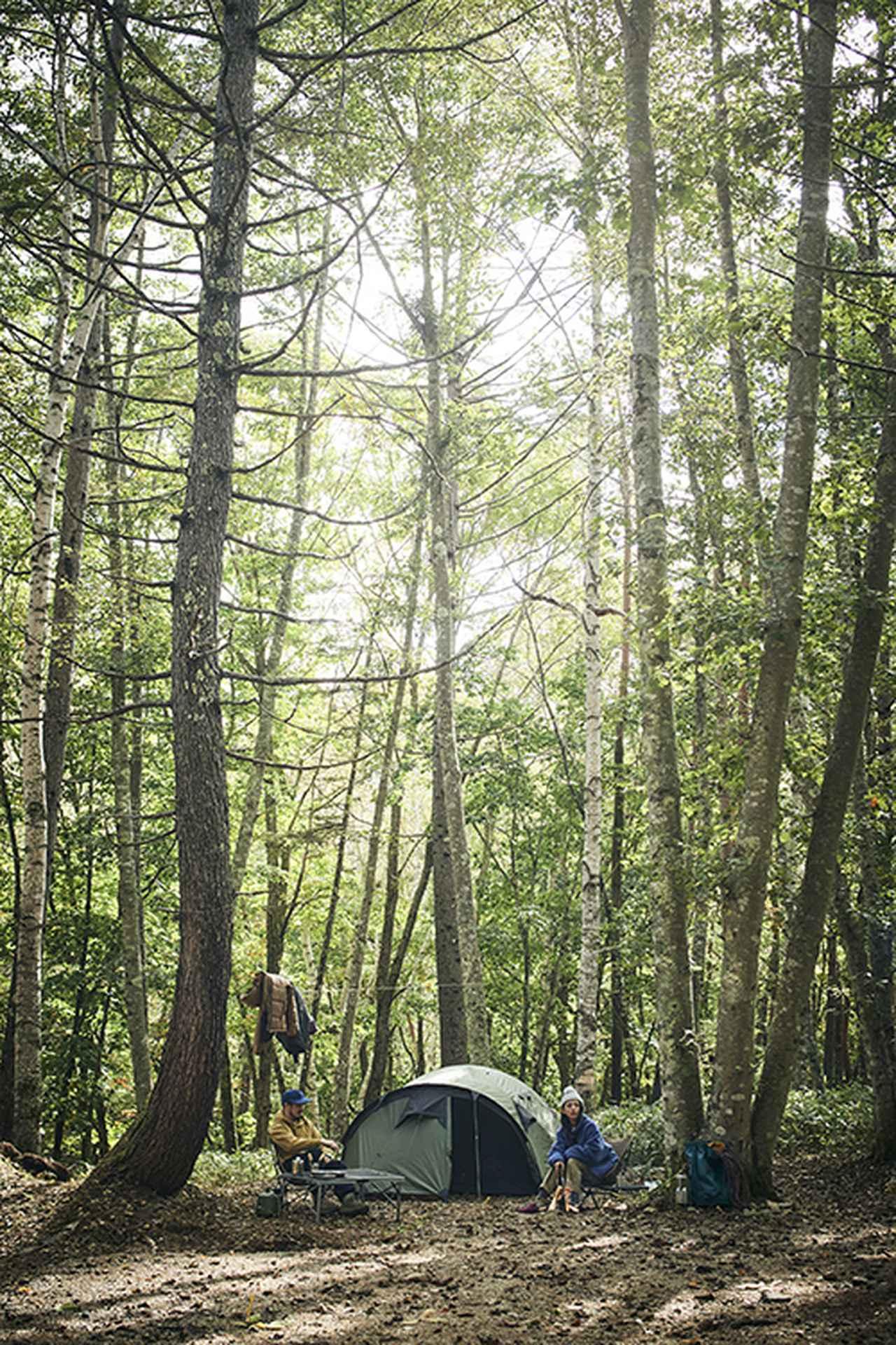 画像: Snugpak(スナグパック)が本気で作ったテント「CAVE(ケイブ)」は森に馴染む