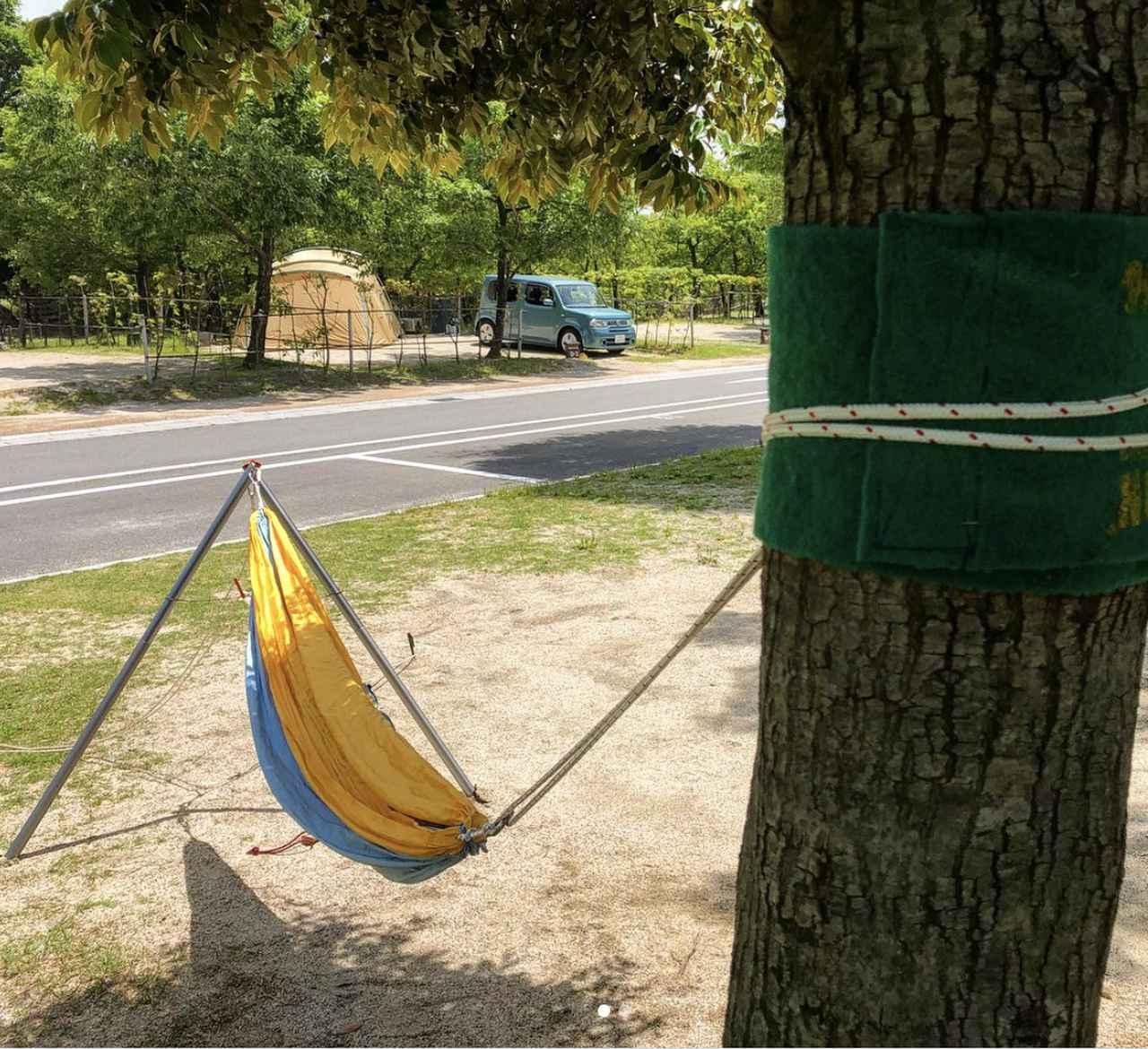 画像: 青川峡キャンピングパーク提供 木にロープをくくるときはロープウェアを忘れずに
