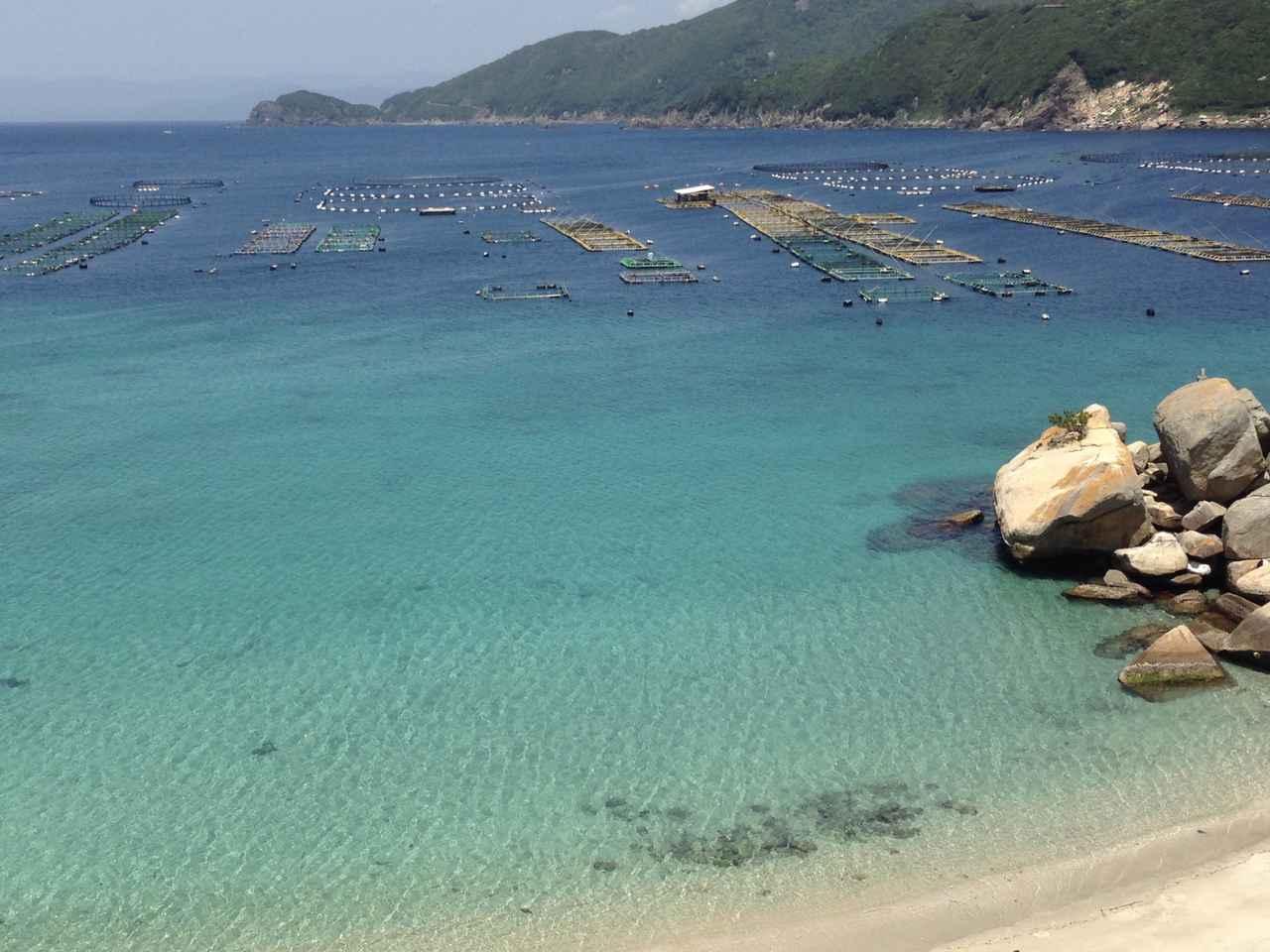 画像: 【おすすめキャンプ場4】高知県「大月エコロジーキャンプ場」:美しい海を堪能!