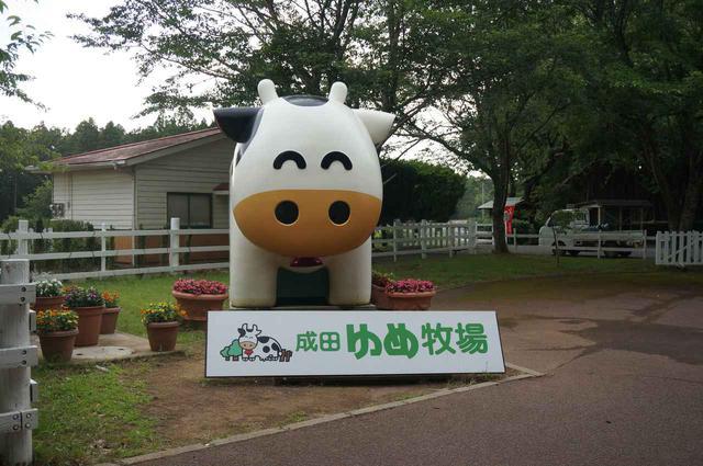 画像1: ハピキャンライター撮影 happycamper.jp
