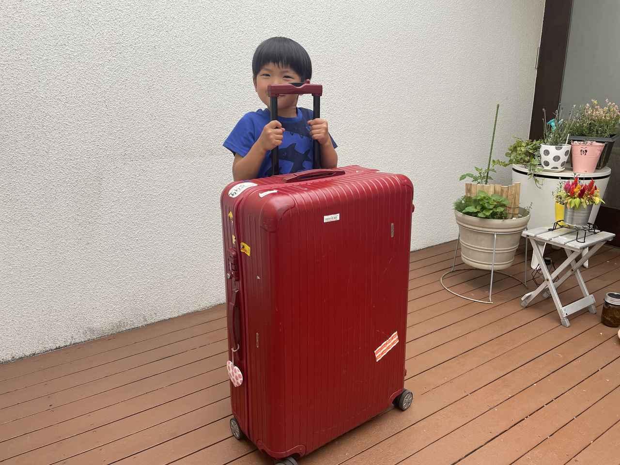 画像: 筆者撮影:5才の息子の大きさと比較してこれくらいのサイズ感