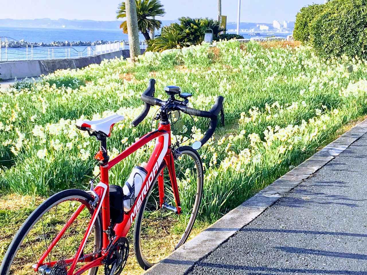 画像: 【ロードバイク初心者必見】購入前に知っておきたい基礎知識を徹底解説! おすすめロードバイク厳選3選 - ハピキャン(HAPPY CAMPER)