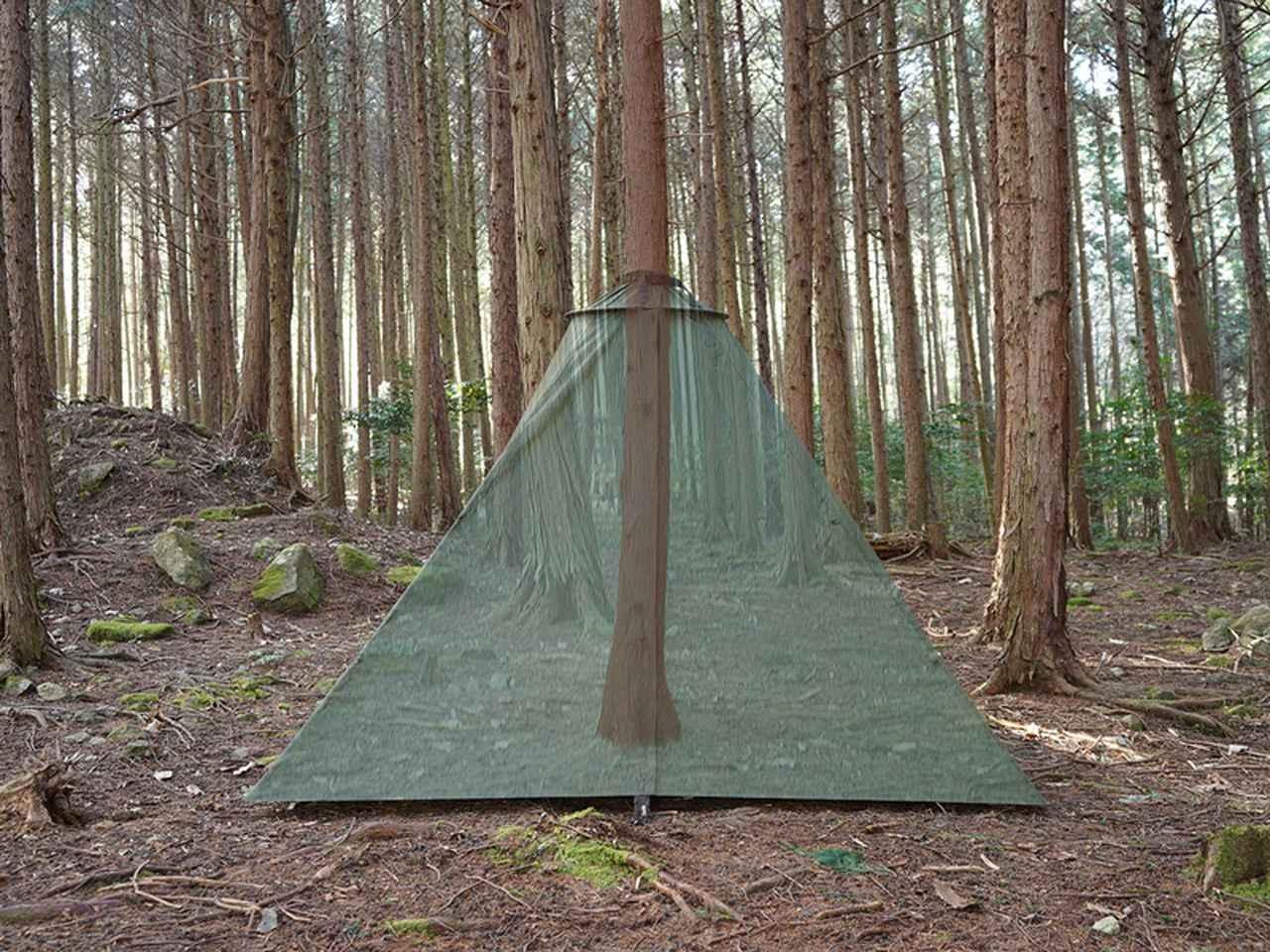画像1: DOD(ディーオーディー)の新作テント「TREE LOVE(トゥリーラブ)」は木がメインポール?!新しいキャンプの楽しみ方を紹介