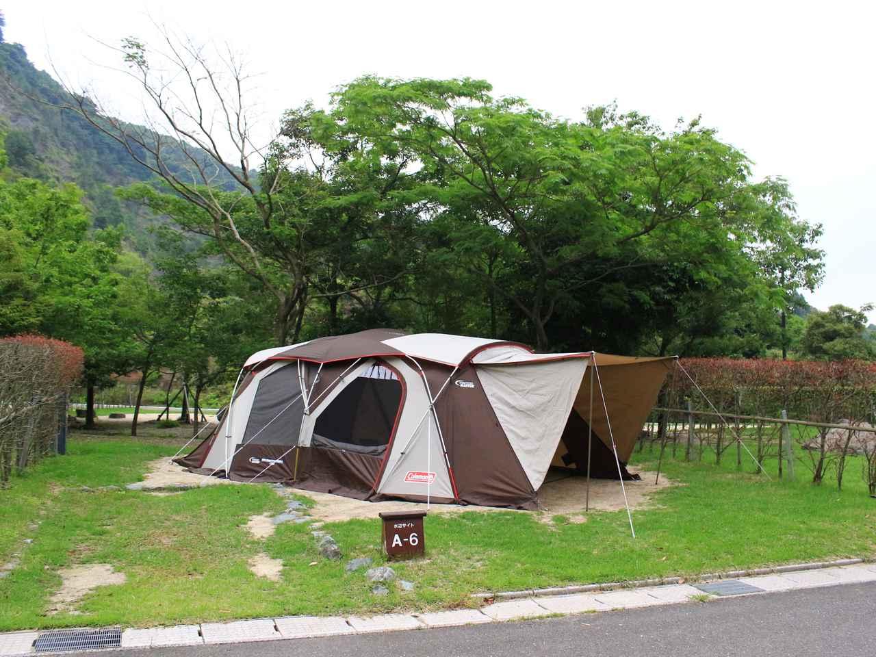画像: 青川峡キャンピングパーク提供 テントのサイズによっては、工夫して張る必要もでてきます。 「コールマン コクーンII」