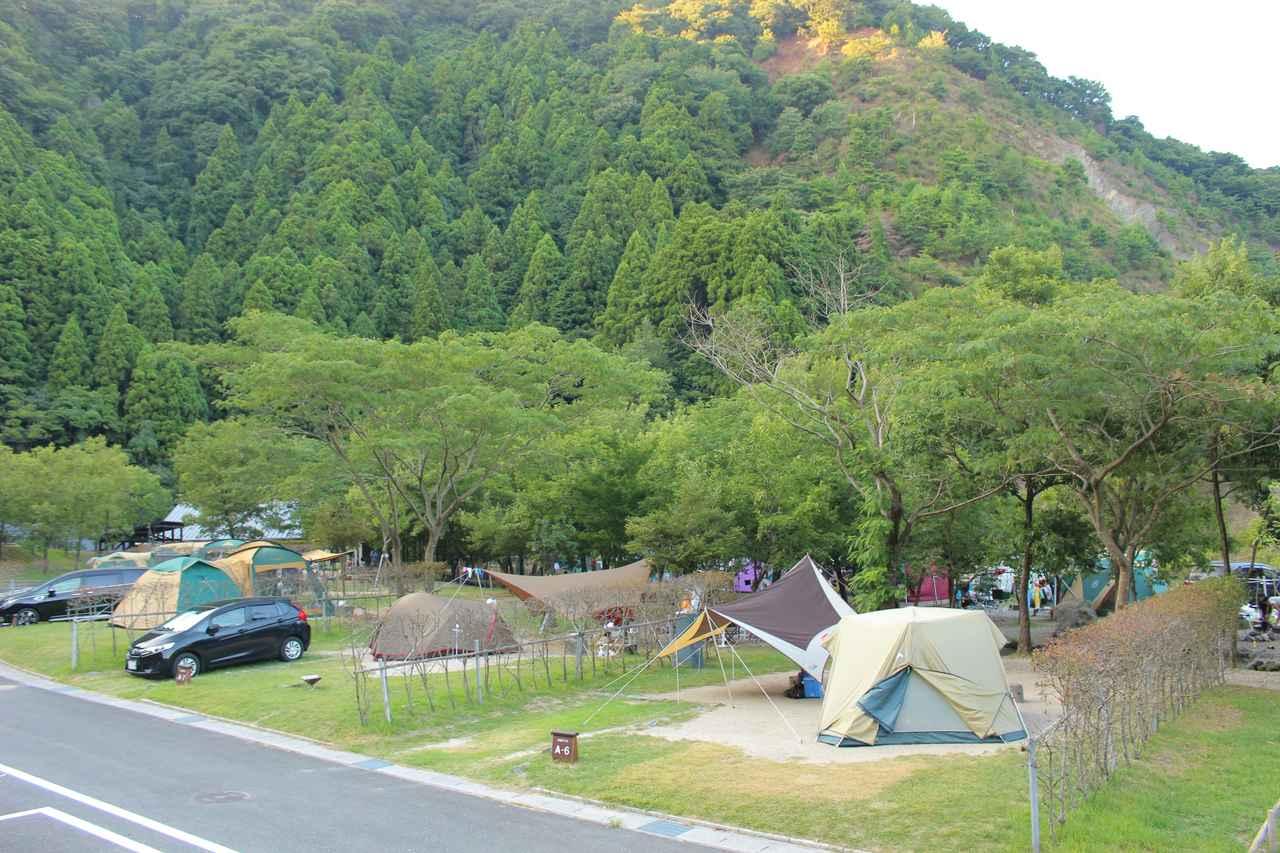 画像: 青川峡キャンピングパーク提供 区画サイト)