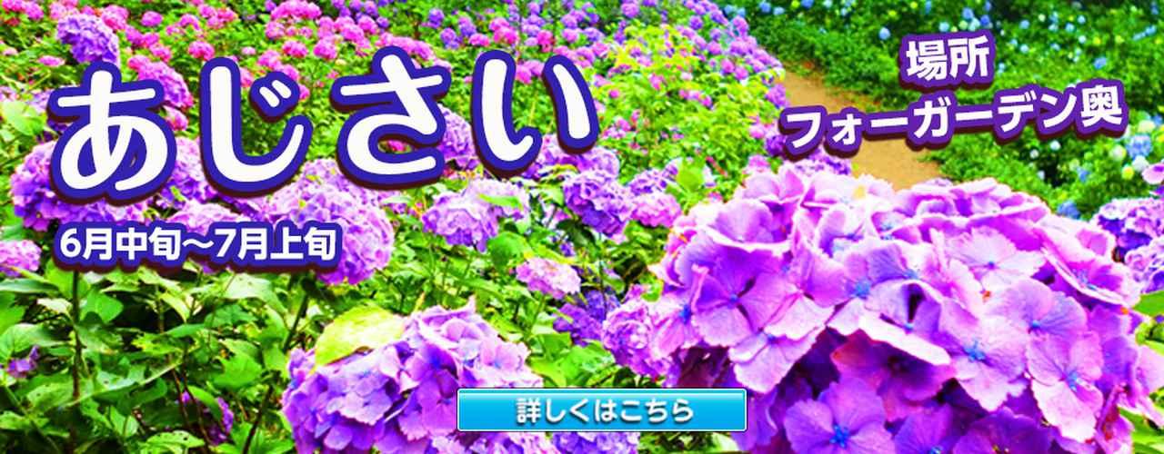 画像: 東京ドイツ村 | 千葉県袖ケ浦市にある花と緑のテーマパーク