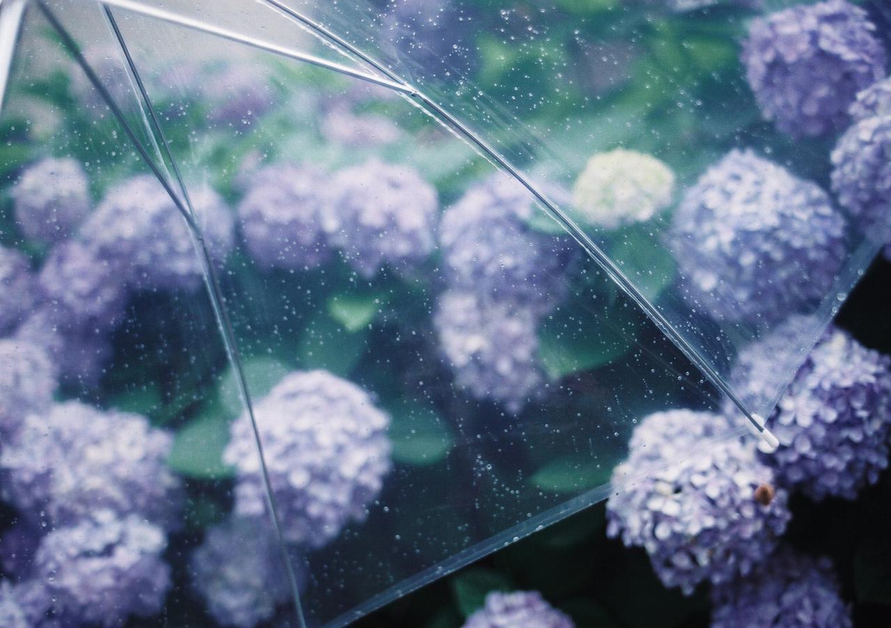 画像: ズバリ!雨キャンプの楽しみ方 | 雨だからこそできるコト