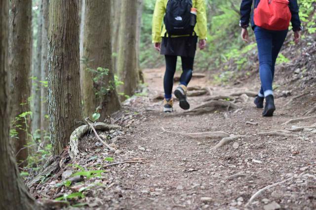 画像: 【関東】登山初心者向けに服装・装備を解説! 日帰り山登りにおすすめな山5選も紹介 - ハピキャン|キャンプ・アウトドア情報メディア