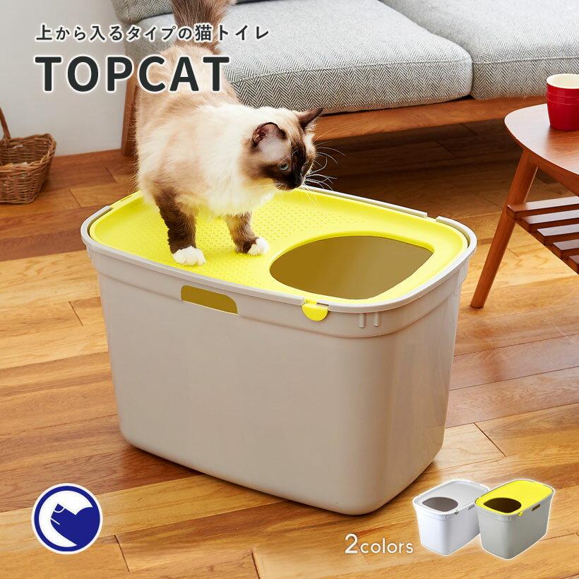 画像3: 【With猫キャンプ】愛猫とキャンプを楽しむ筆者のおすすめアイテム&注意点を伝授します!
