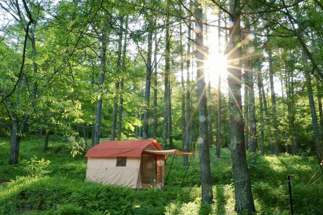 画像: 普段とは別世界でリラックスできるのもキャンプの魅力 とは言え何から買えばいいのかわからないのも正直なところ