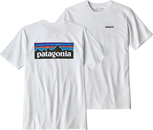 画像1: 結局Tシャツはパタゴニア!キャンプライターが365日着れるPatagonia Tシャツの魅力を徹底解説