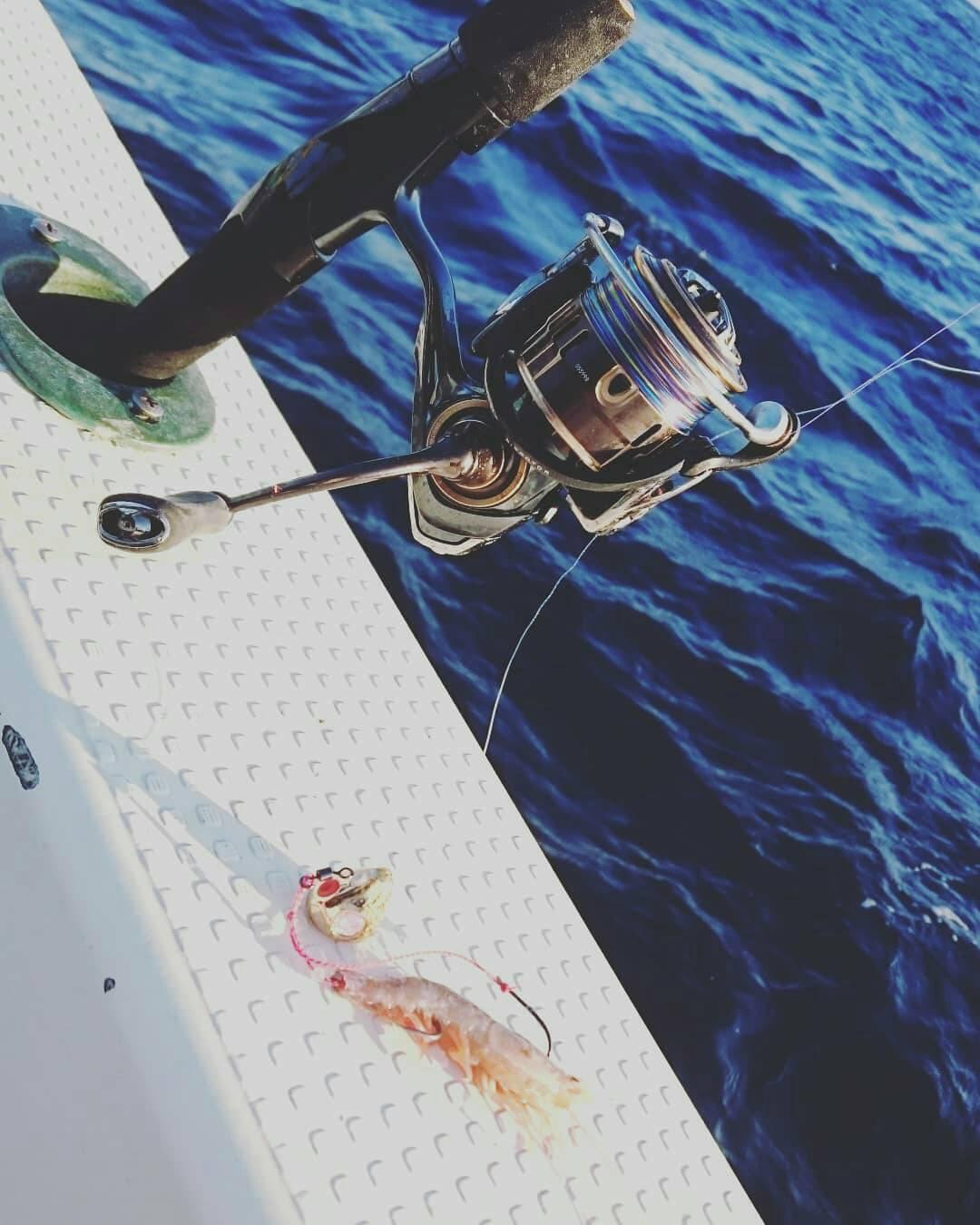 画像1: 休日釣行!