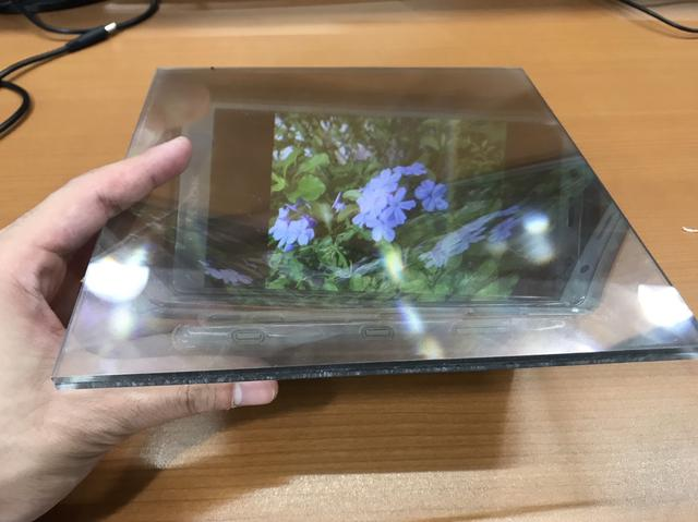 画像: 映っているお花は私が趣味で育ててるお花です。