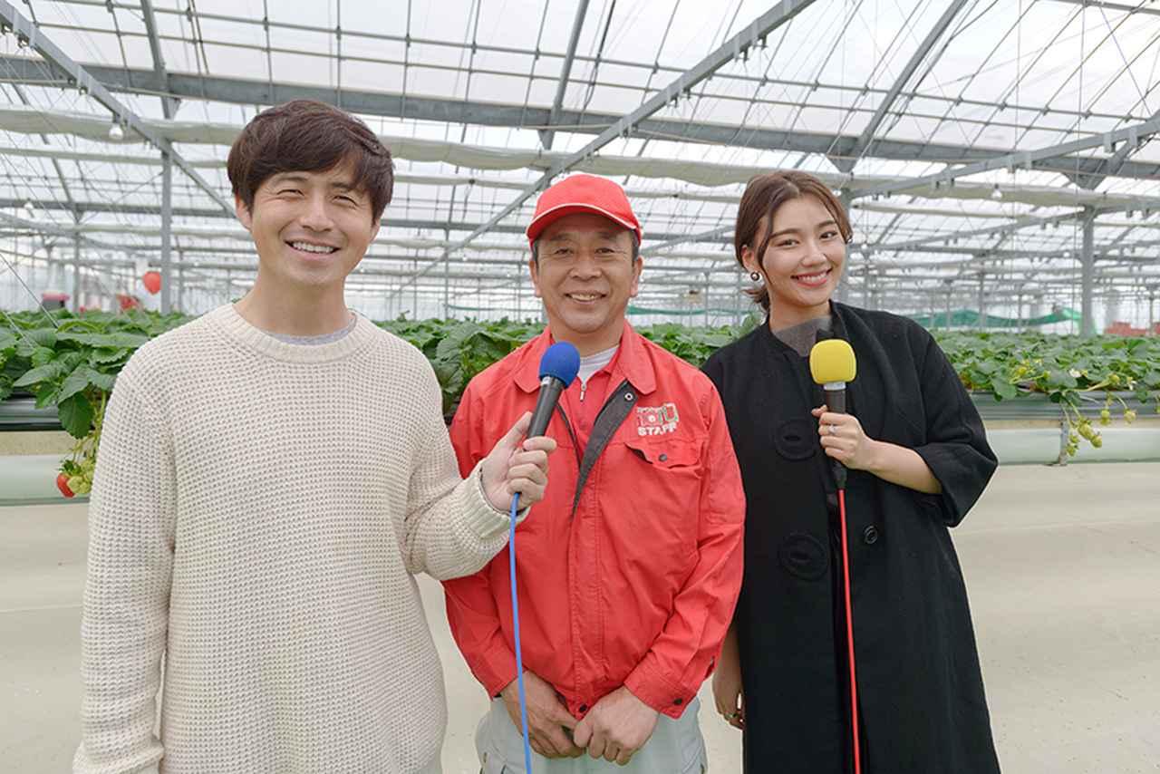 画像1: 「いちご畑 はる」の岡本さんにお話を伺いました