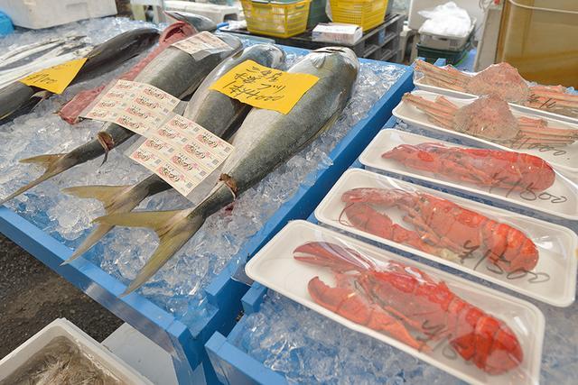 画像3: 新鮮な魚介類がいっぱいです!