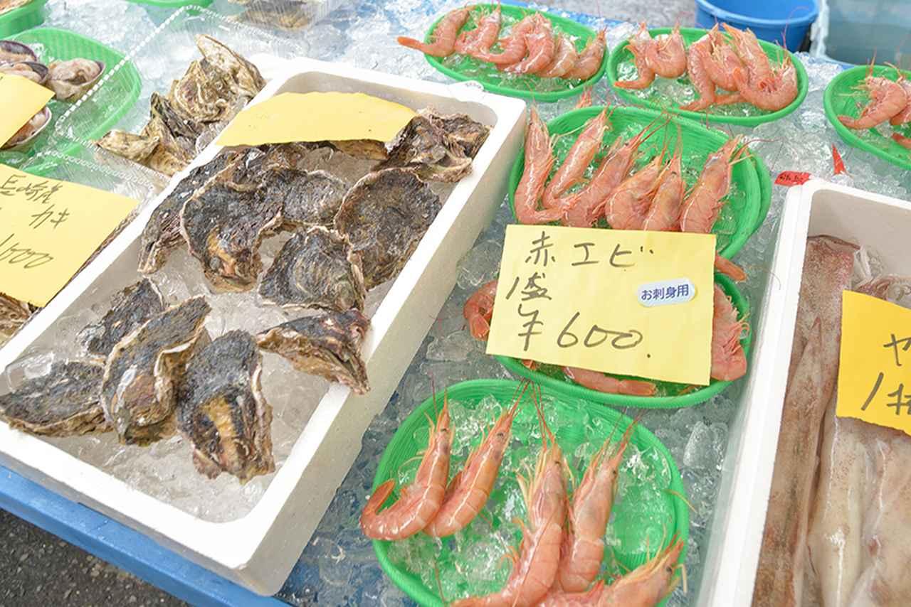 画像4: 新鮮な魚介類がいっぱいです!