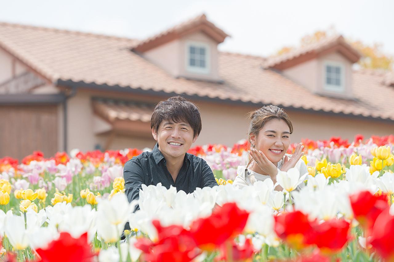 画像1: オシャレパッソで行く「堺・緑のミュージアム ハーベストの丘」10万本のチューリップ篇!