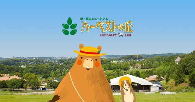 画像: 堺・緑のミュージアム ハーベストの丘