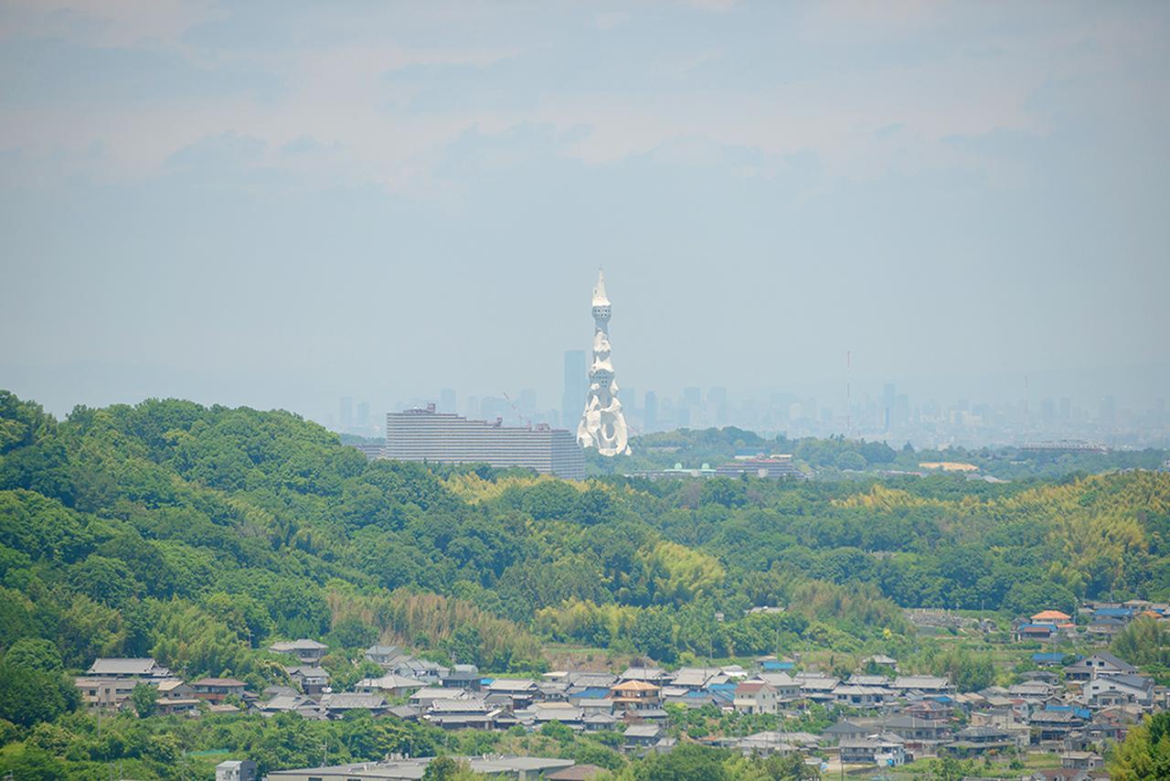 画像4: オシャレパッソで 富田林市農業公園サバーファームに行ってきました!