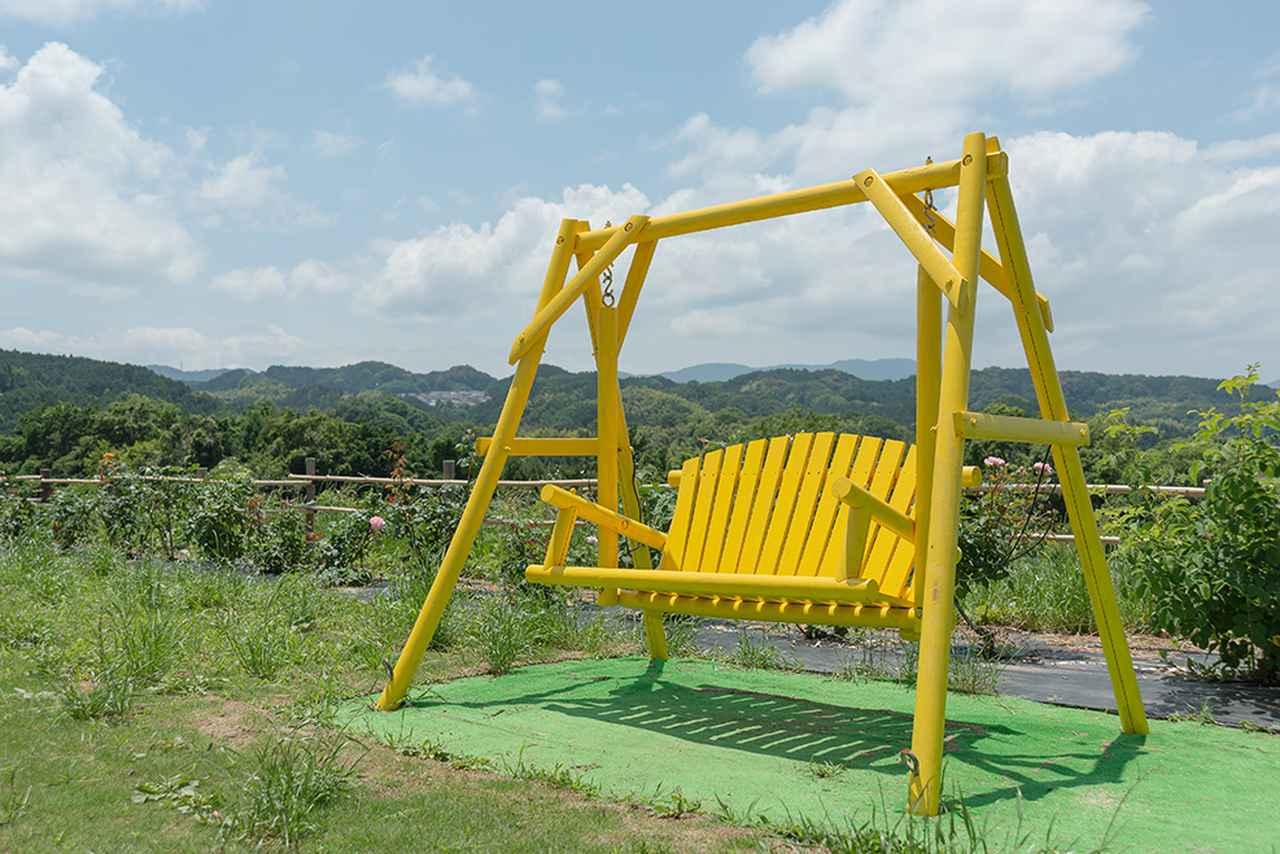 画像6: オシャレパッソで 富田林市農業公園サバーファームに行ってきました!