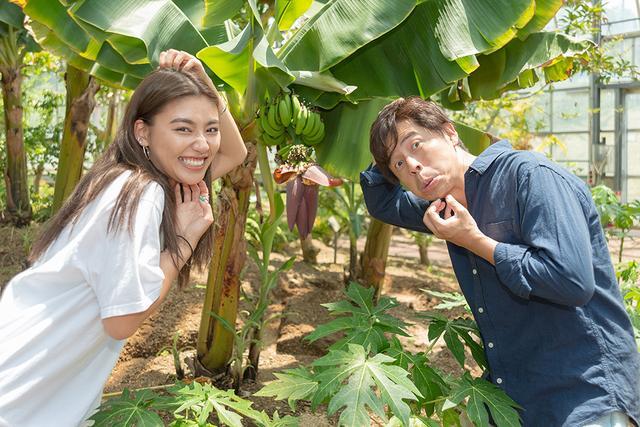 画像: 温室へ行くと…バナナ!?