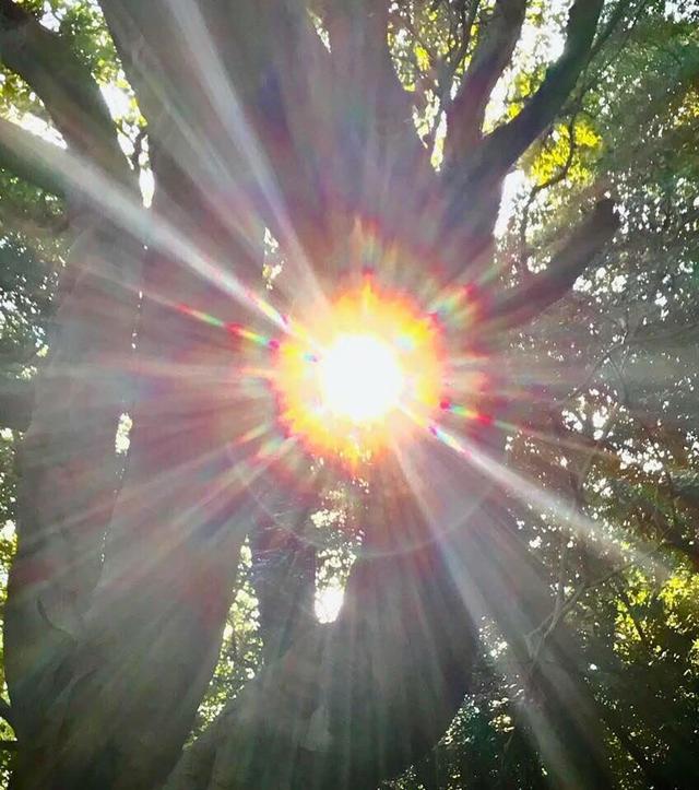 画像1: 運気がドカンとアップする!光の写真