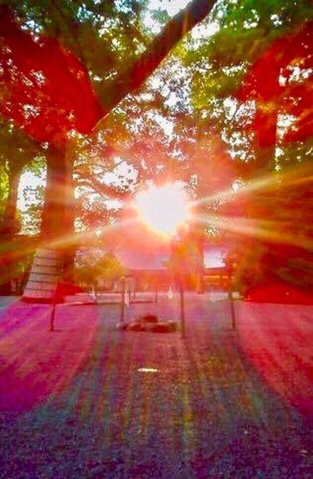 画像: 運気がドカンとアップする!光の写真