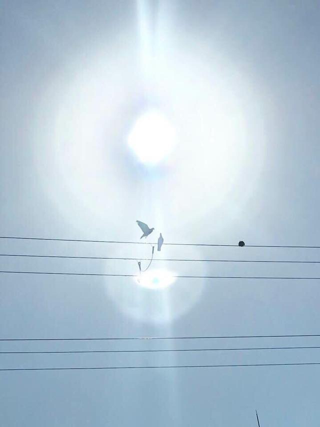 画像4: 運気がドカンとアップする!光の写真