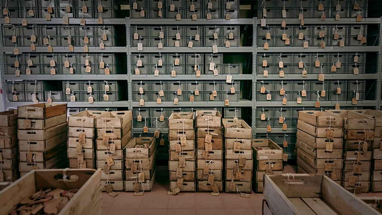 画像: 研究所の収蔵庫。数千万点以上の遺物が収蔵されている