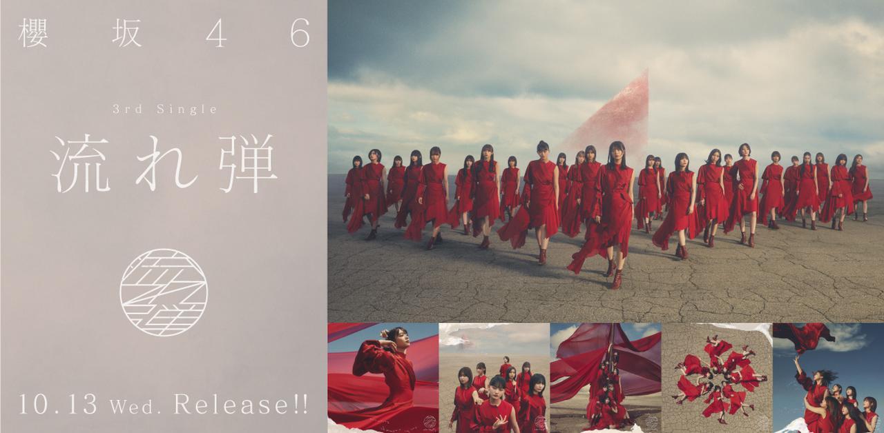 画像: 櫻坂46公式サイト