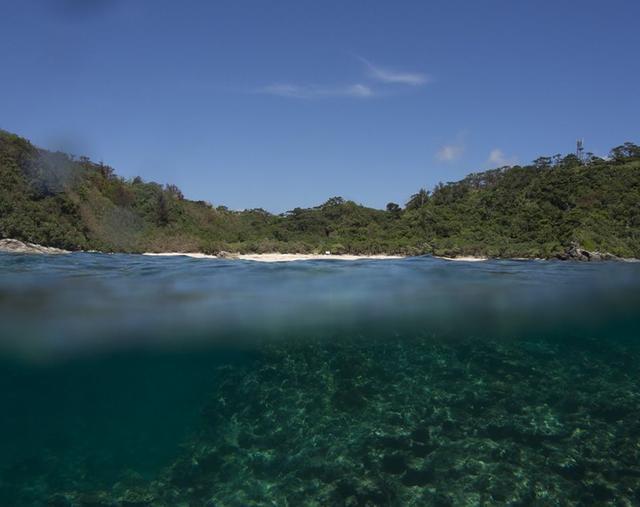 画像6: 海、空、人。移り住み6年、写真家・藤代冥砂が綴る「沖縄のあお」