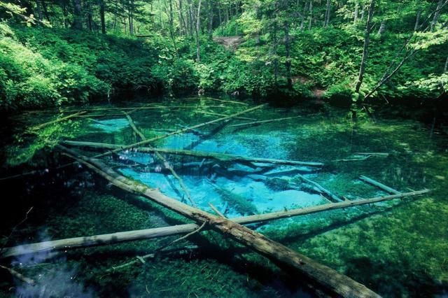 画像: 神の子池