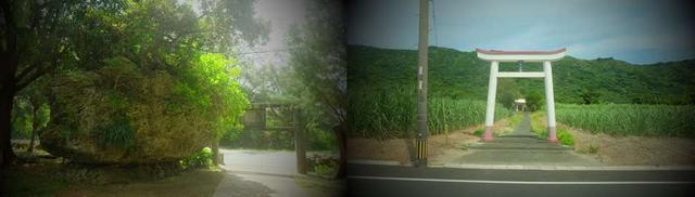 画像: 苔むした大きな岩が鳥居の横に据えられた末吉神社(左)と、さとうきび畑のなかに佇む保食神社(右)