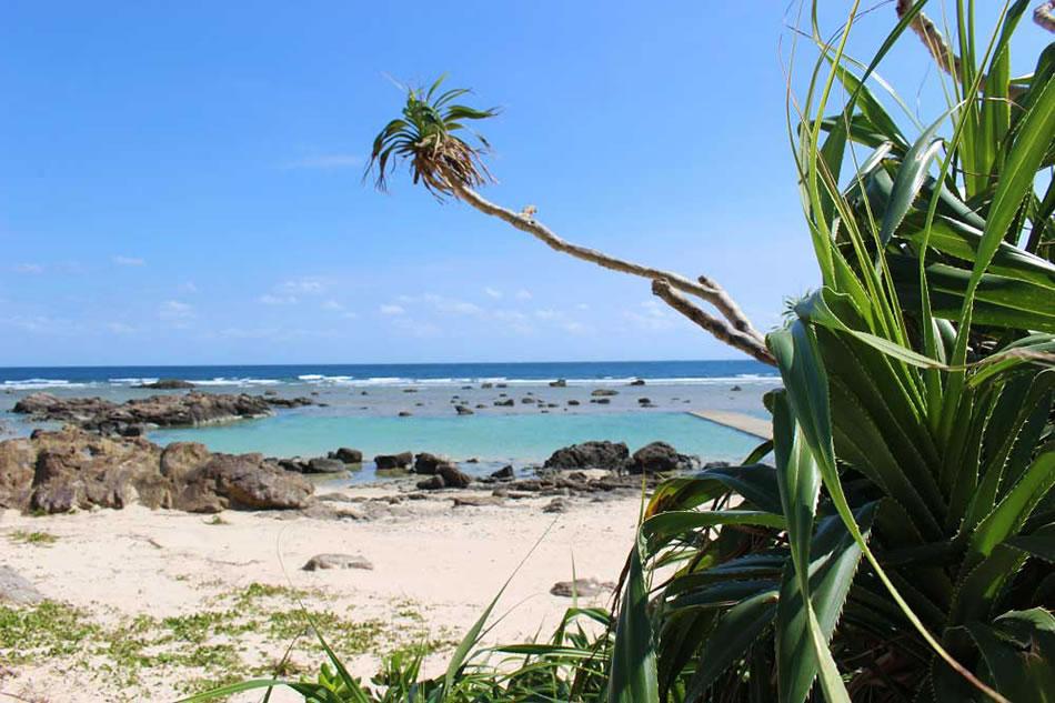 画像: あやまる岬の天然プール。潜ってみると熱帯魚もいる