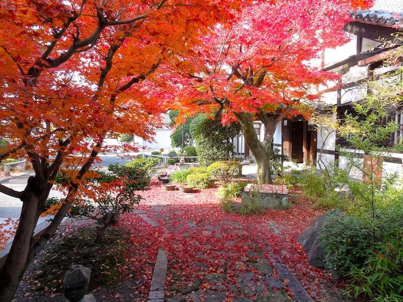 画像: 写真提供:浄土宗大本山 百萬遍知恩寺