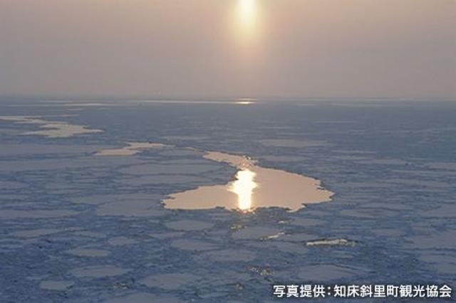画像1: 知床は、流氷の海が育んだ独自の自然と生態系を持つ世界遺産